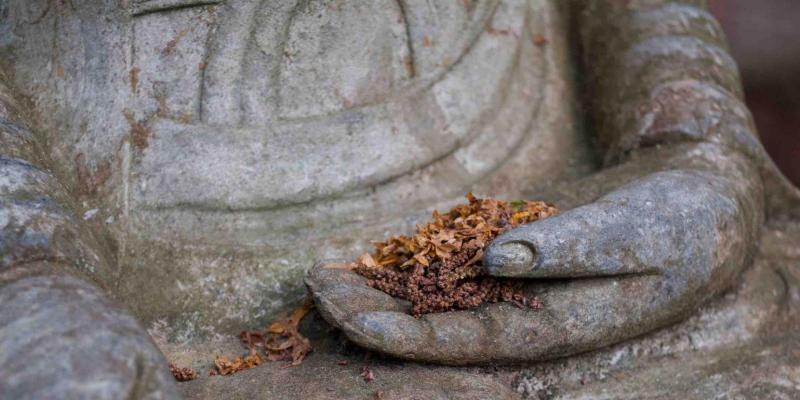Les mains du Bouddha